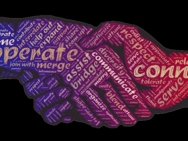 Consultation en visio, consultation vidéo, téléconsultation, un suivi connecté